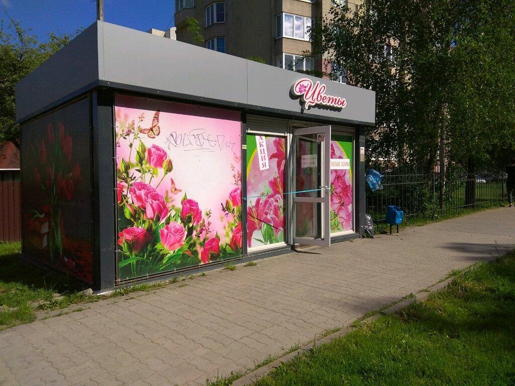 Калининград цветы интернет магазины телефонов, цветов