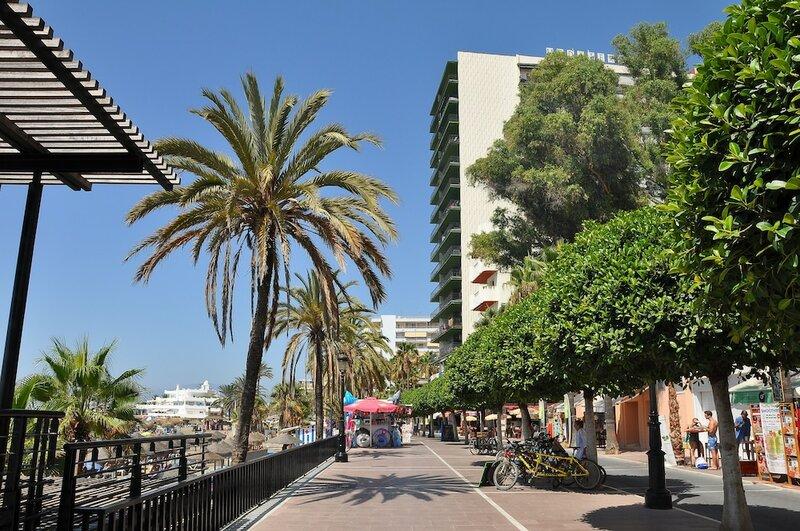 Apartamento Mediterraneo 1d