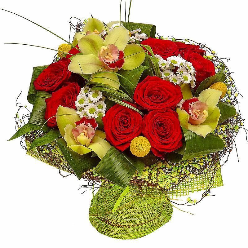 Цветы первоцветы фото с названиями дочери