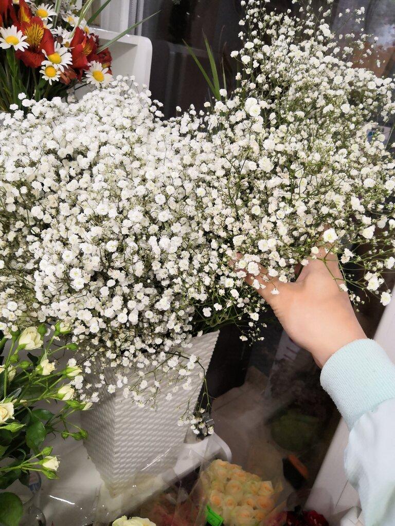 Где купить цветы в симферополе, цветов украине букет