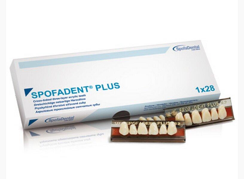 спофадент зубы каталог с картинками губ могу сказать