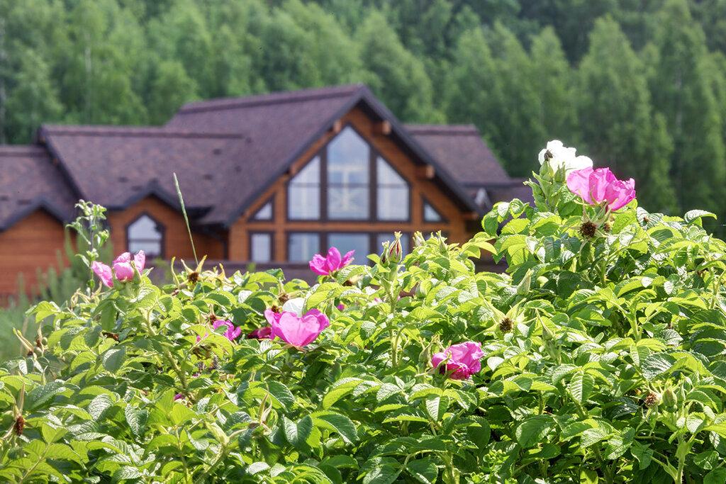 агентство недвижимости — Коттеджный поселок Пестово - Официальный офис продаж — деревня Румянцево, фото №3