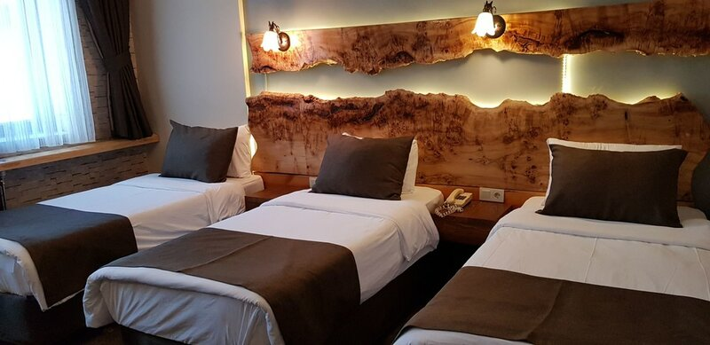 Sarikamis Kayi Snow Hotel