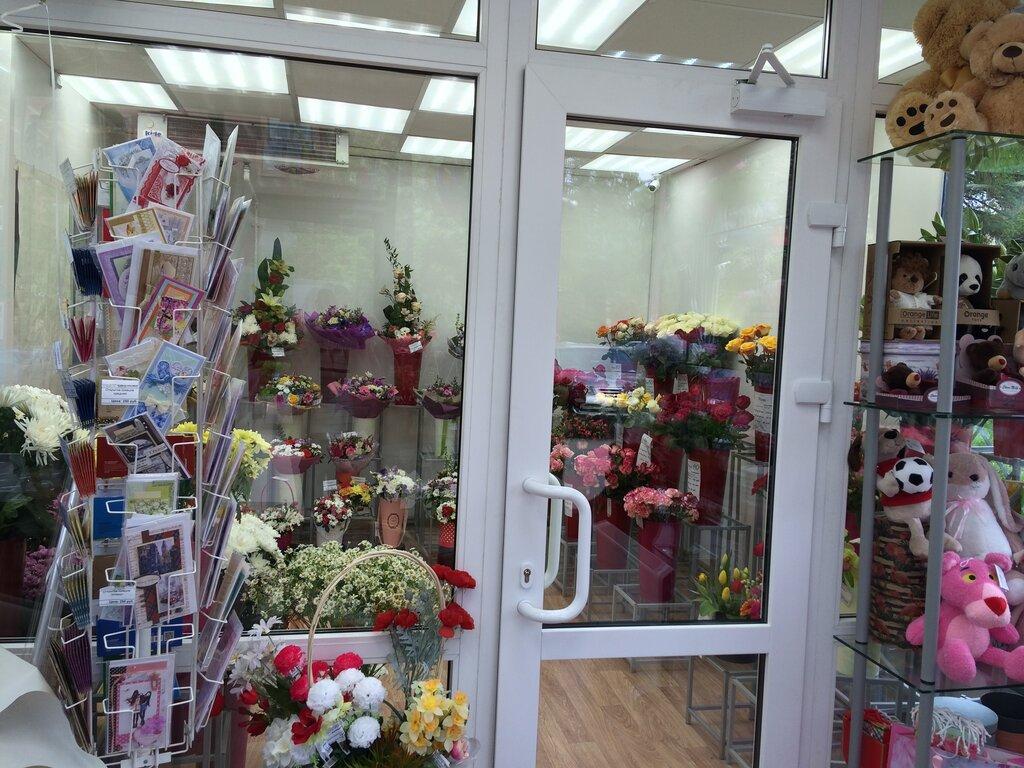 Роза, цветы санкт петербург магазины игрушек