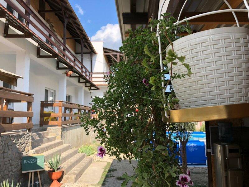 Гостевой дом Каштан