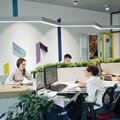 Центр дизайна интерьера, Услуги дизайнеров интерьеров в Петрозаводском городском округе