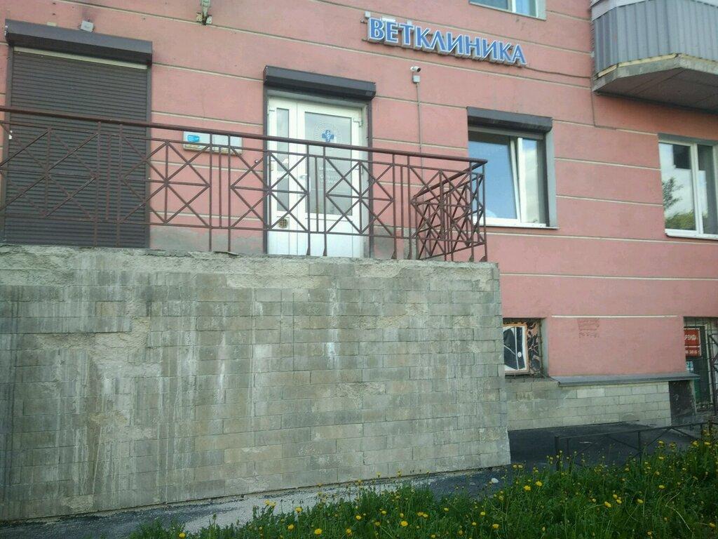 ветеринарная клиника — Городская Ветеринарная клиника — Санкт-Петербург, фото №4