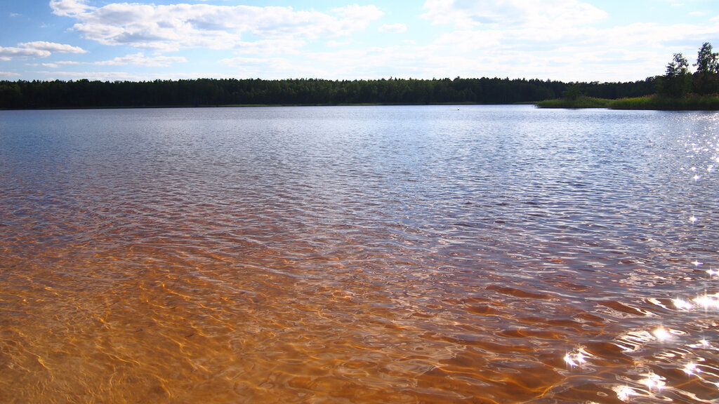 святое озеро нижегородская область фото знал