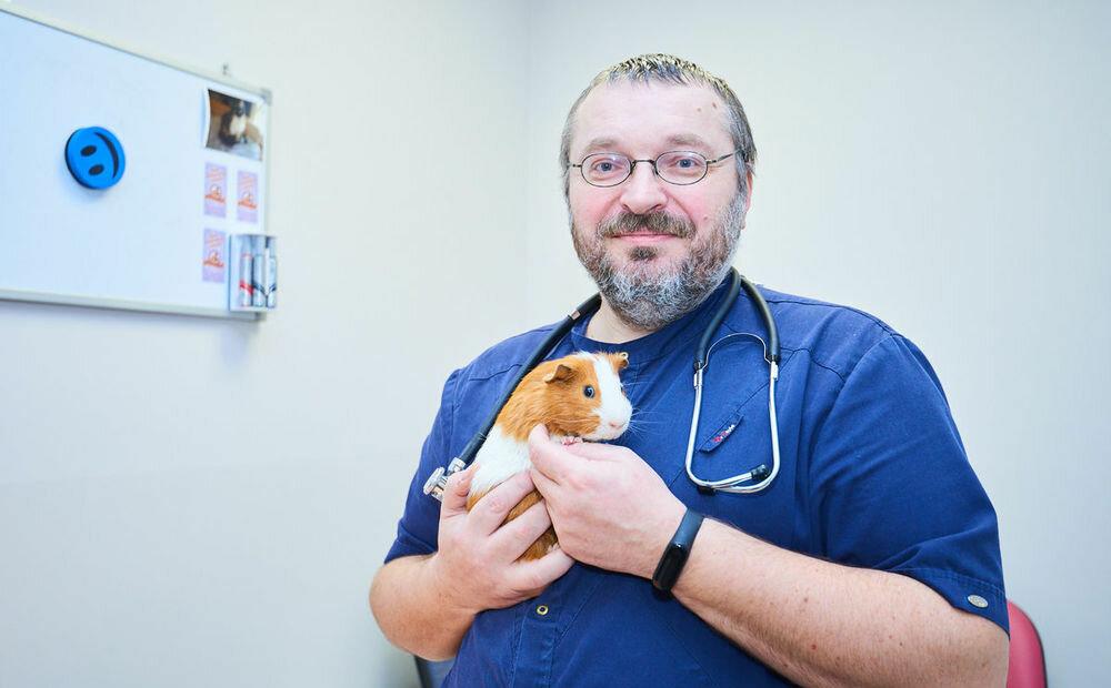 ветеринарная клиника — Главное Хвост — Минск, фото №1
