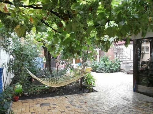 Grapes Guest House