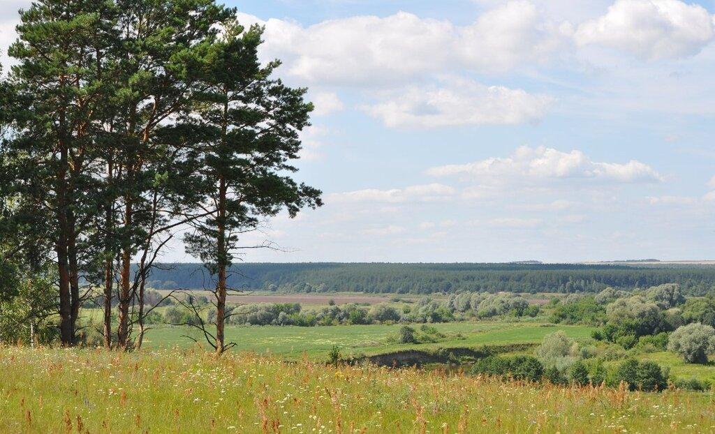 Туристическая база «Добрый Яр» в Калужской области - цены ...