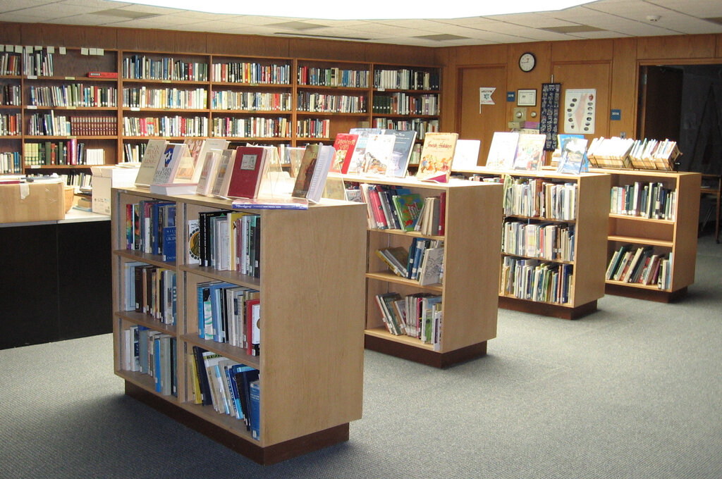 пожалела картинки про библиотеку и библиотекарей подушек выбор холлофайбер