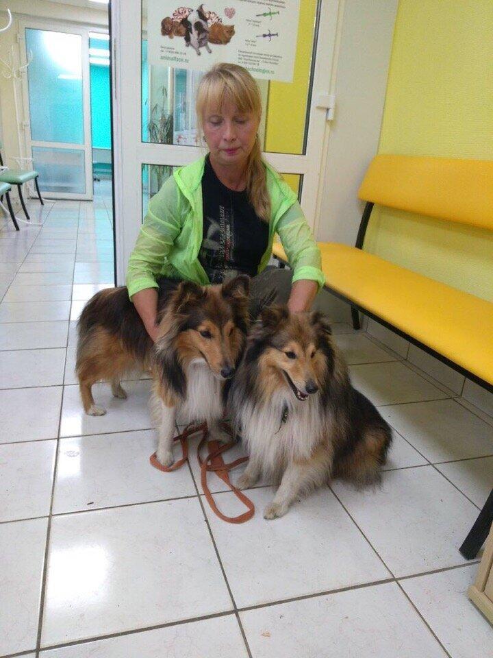 ветеринарная клиника — Ветко — Тула, фото №9