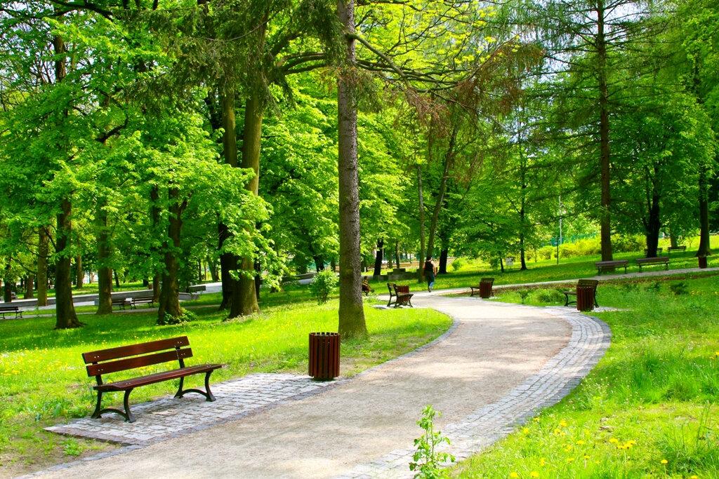 Маленькие картинки парка