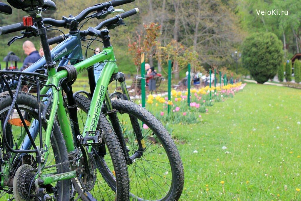 прокат велосипедов — ВелоКи — Кисловодск, фото №4
