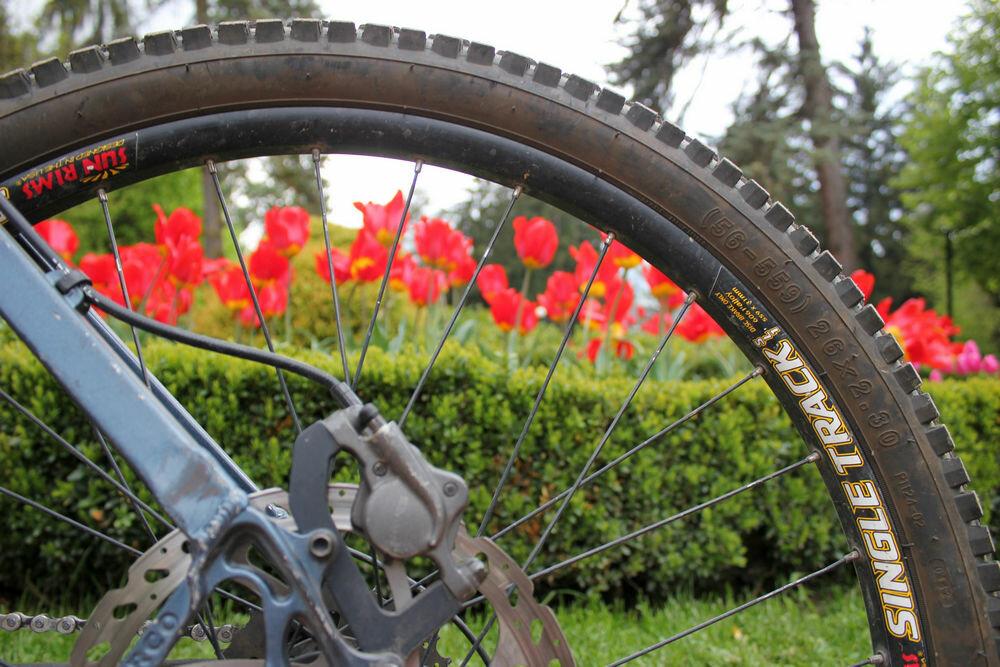 прокат велосипедов — ВелоКи — Кисловодск, фото №5