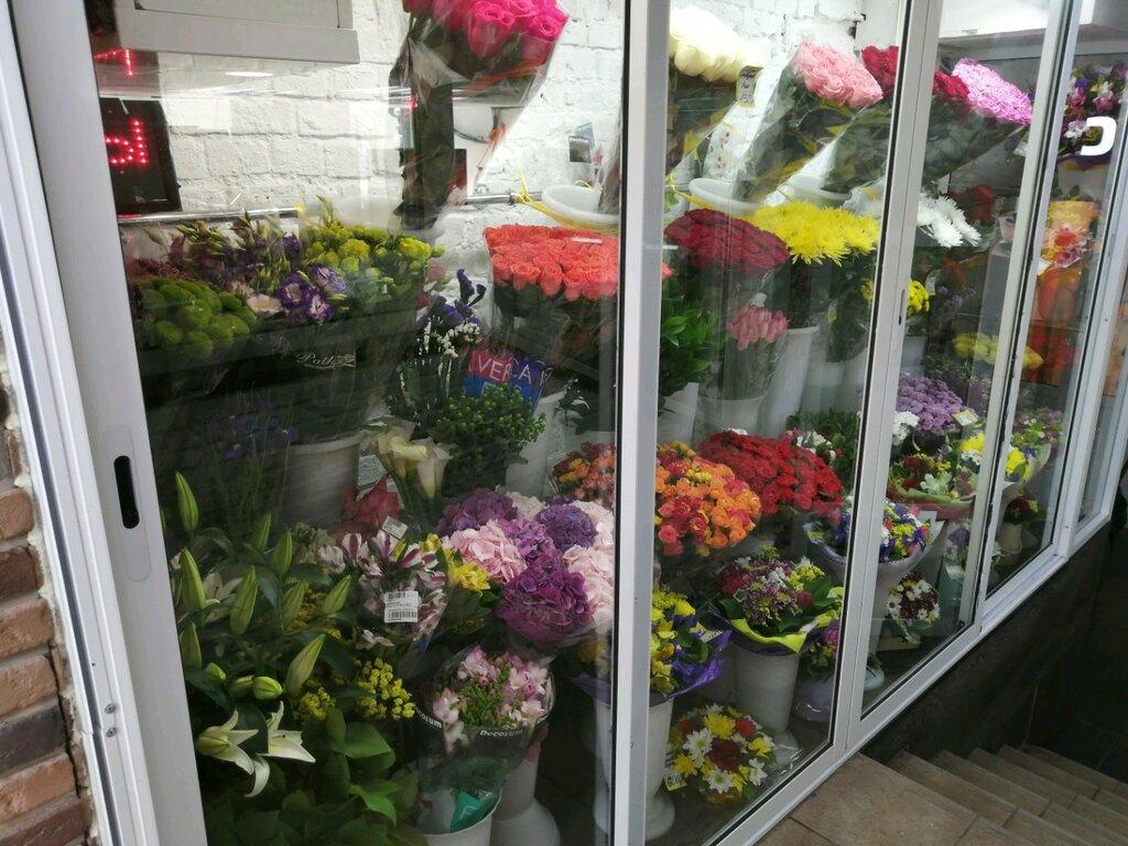 Мурманск, купить магазин цветов в москве 24 часа