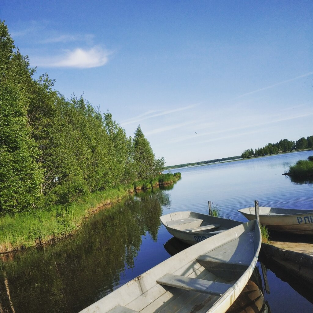сауна — Таймаут — Сестрорецк, фото №9