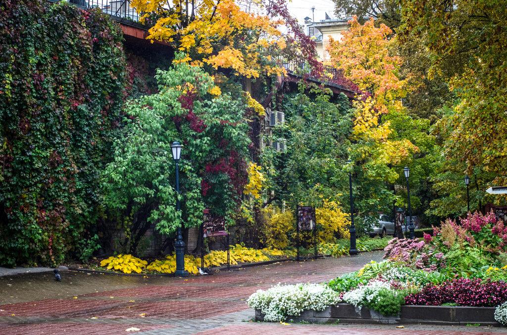 Измайловский сад фото