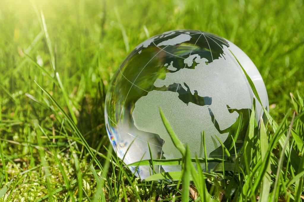 год экологии картинки фото монеты