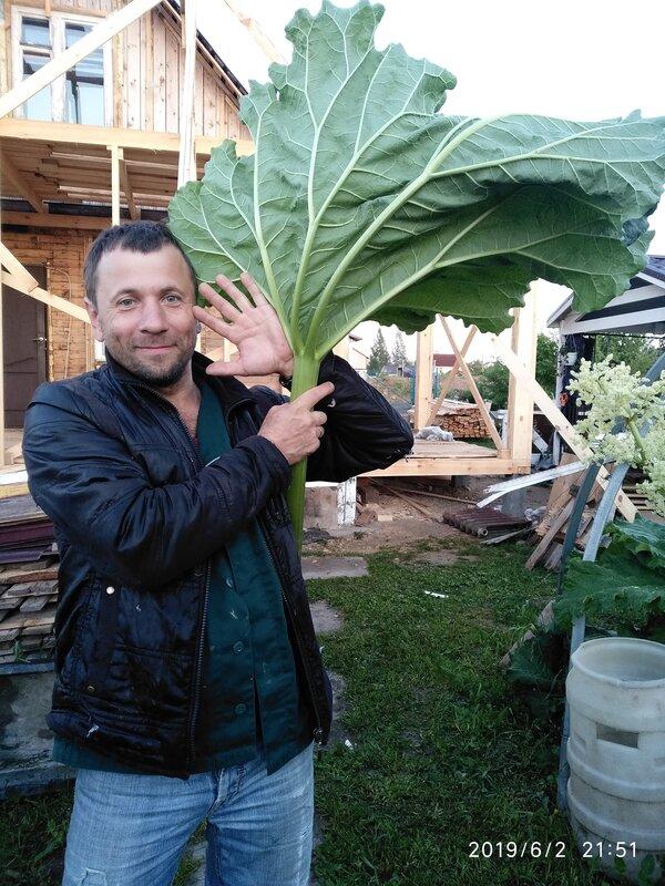 Винодельческое хозяйство семьи Кондировых