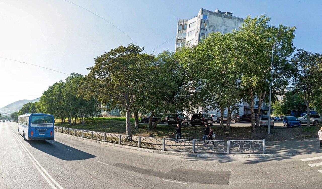 петропавловск камчатский пограничная улица фото этого представителя