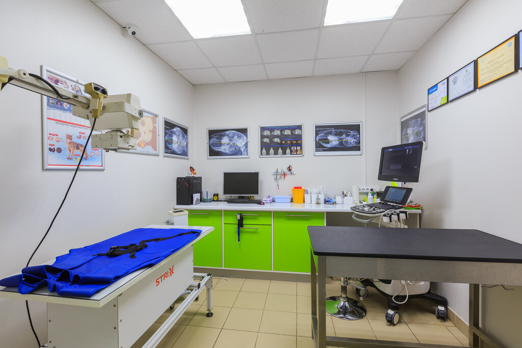 ветеринарная клиника — Ветеринарная клиника Лимпопо — Красноярск, фото №2