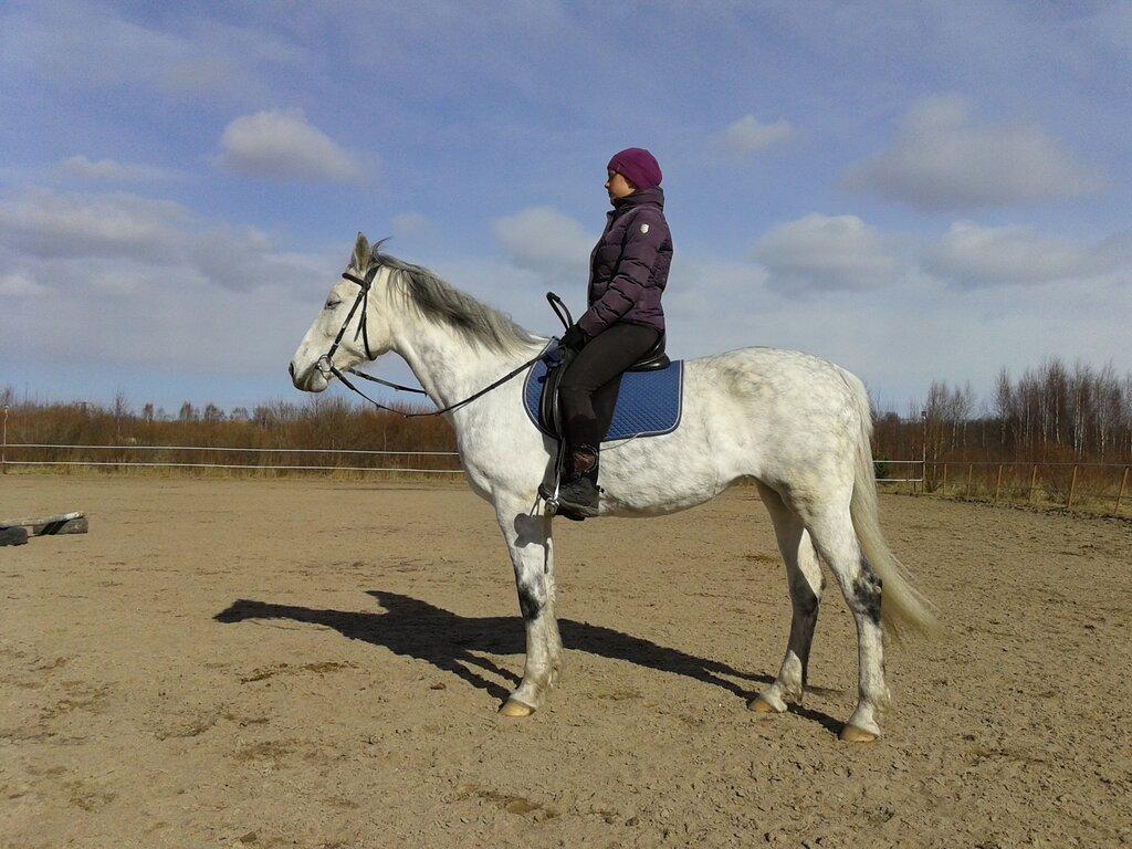 ялуторовск тюменская фото конный воспитывала восьмерых