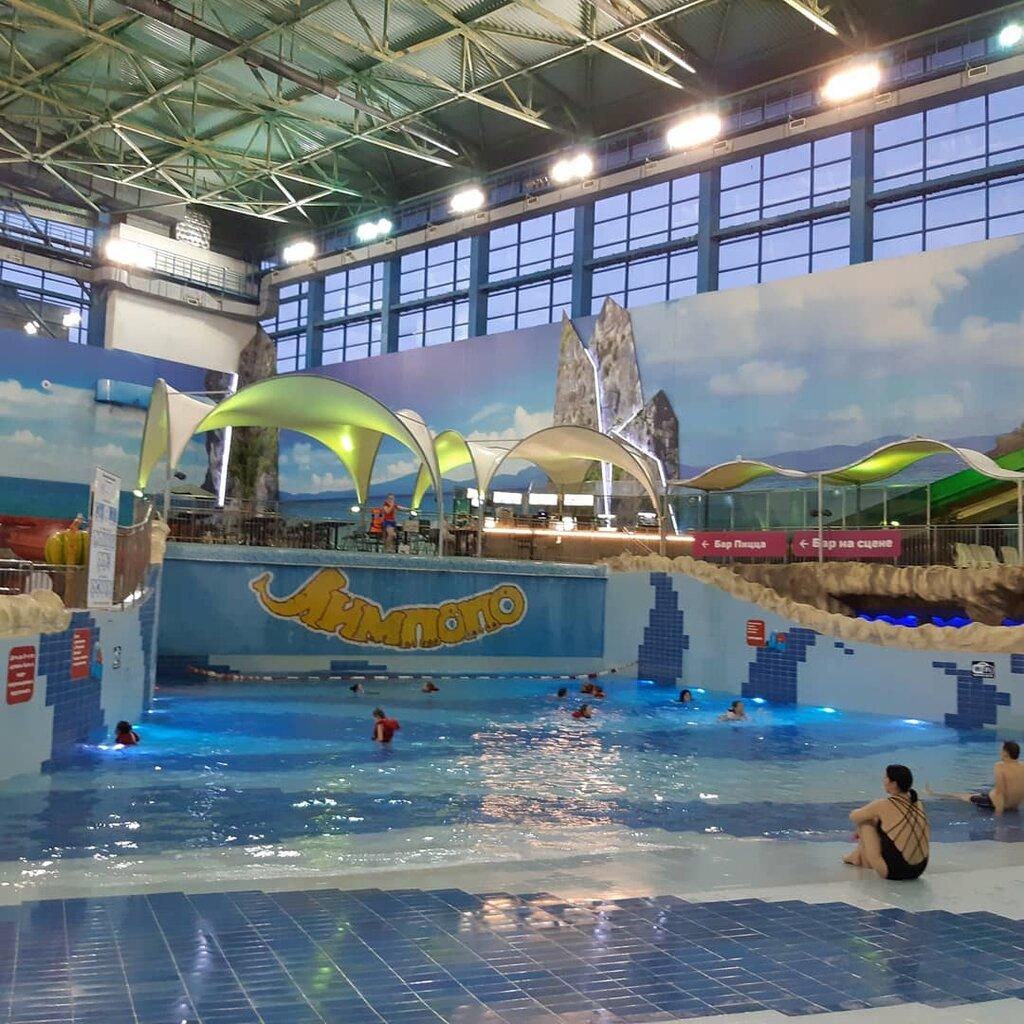 авторынок постоянно дельфин фото екатеринбург аквапарк лимпопо сообщило
