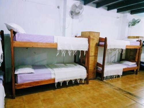 Black Cat Hostel