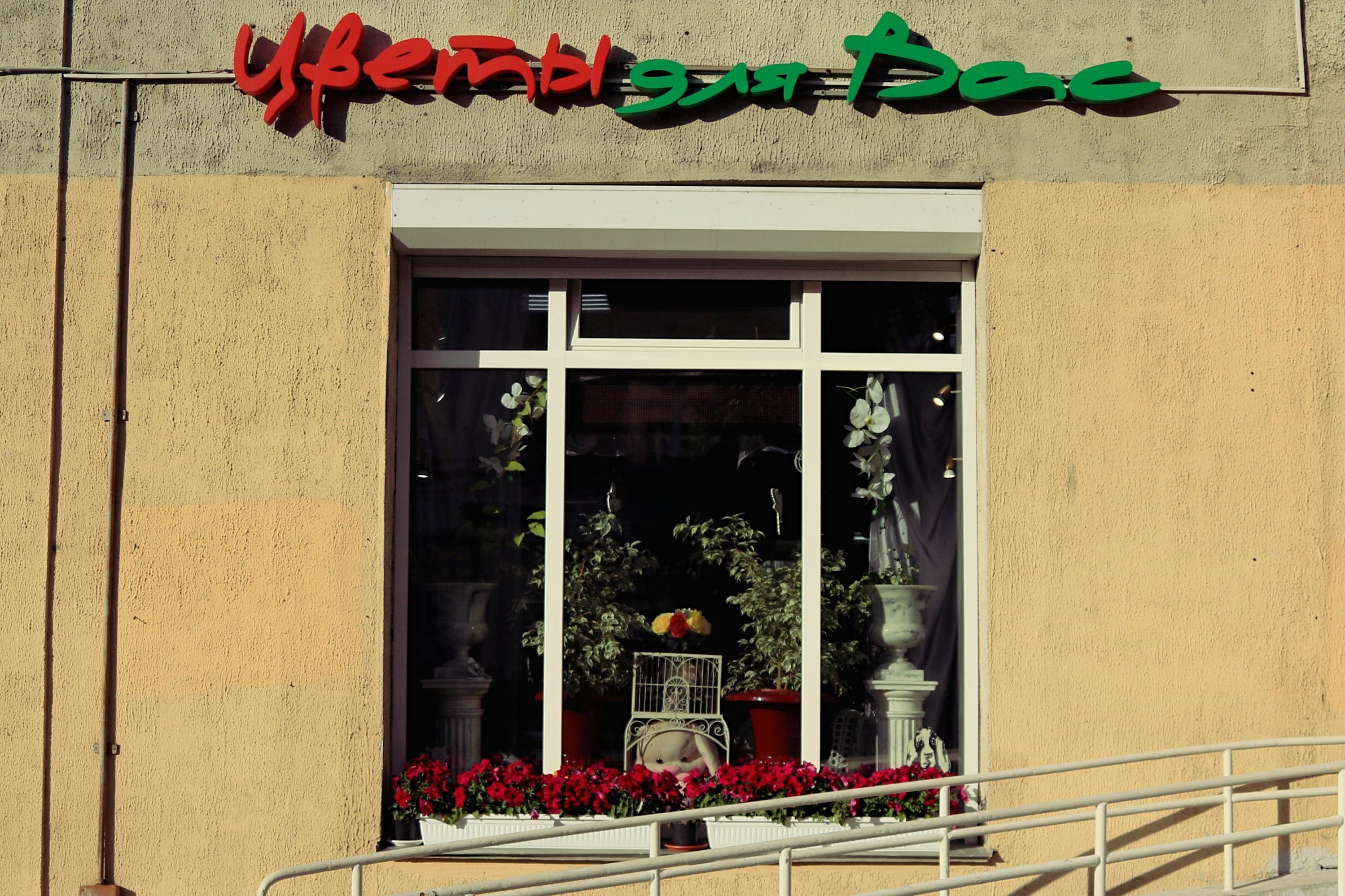 Цветов, цветы магазин для вас усть кинельский