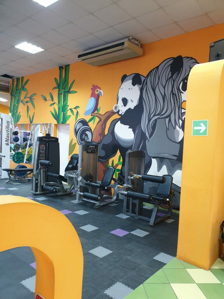 Клуб панда москва фон для фотошопа в ночном клубе
