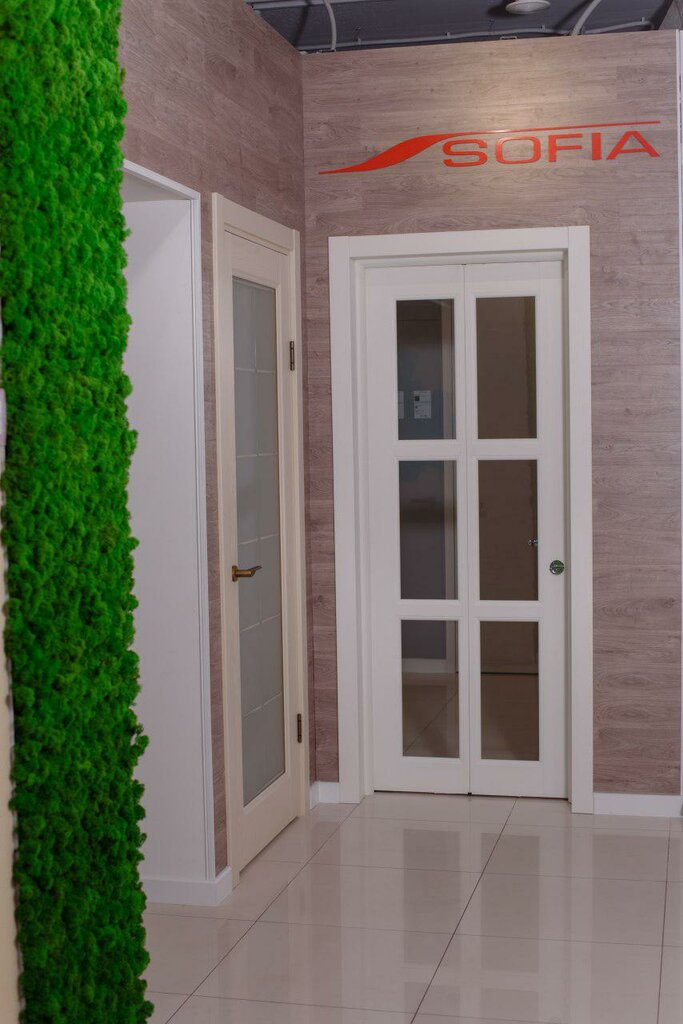 двери — Софья Двери — Самара, фото №1