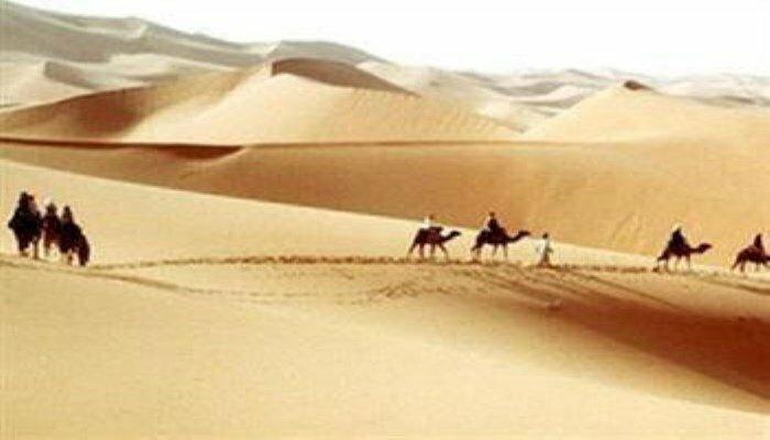 Camel Safari Camp