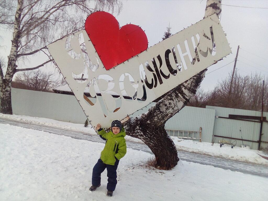 детский лагерь отдыха — Дол Волжанка — Ульяновская область, фото №2