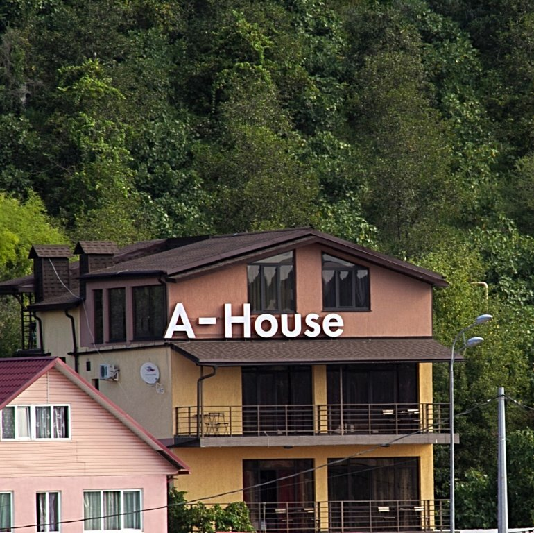 Amosov's House
