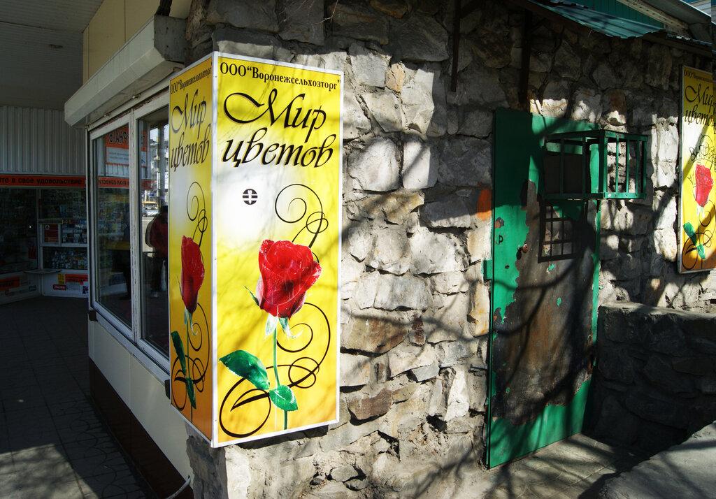 Оптовым ценам, мир цветов интернет магазин каталог воронеж