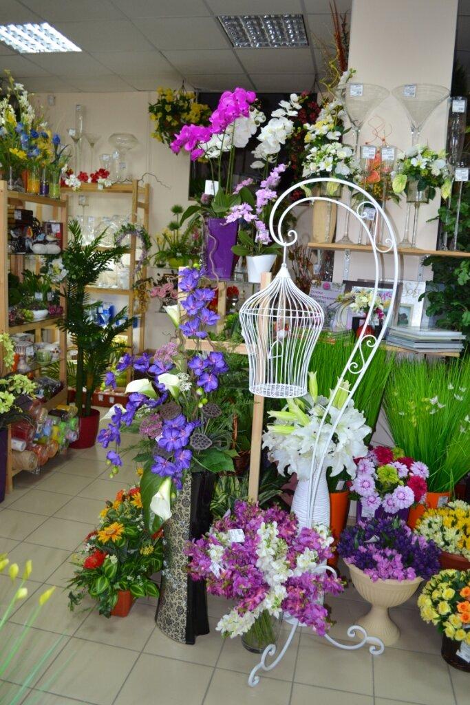 Цветов россии, флора дизайн магазин цветов ставрополь ставропольский край