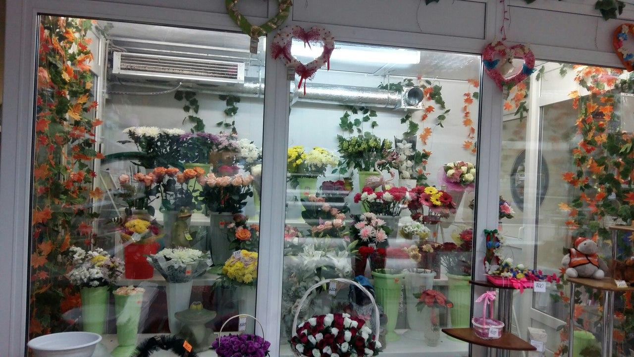 Цветы, магазин цветов ногинск