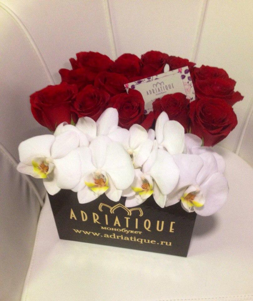 Заказать цветы в интернете орхидея куйбышева, букеты флора центр