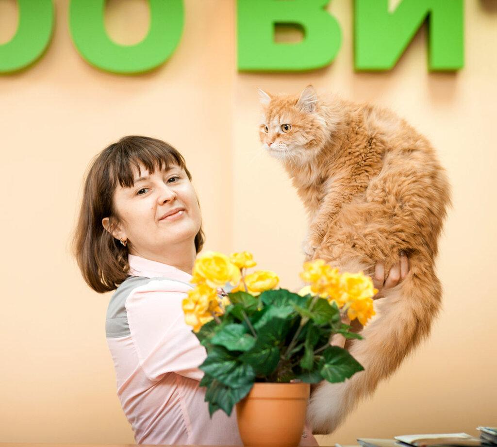 ветеринарная клиника — ЗооВита — Казань, фото №1