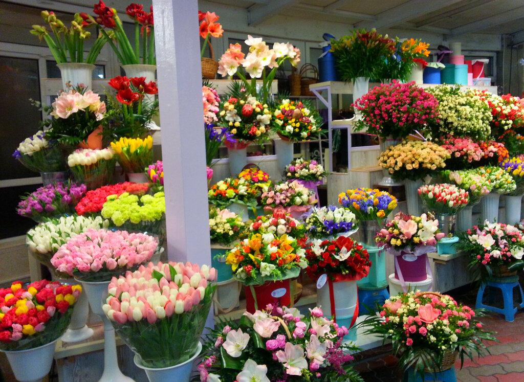 Февраля, магазин цветов галерея