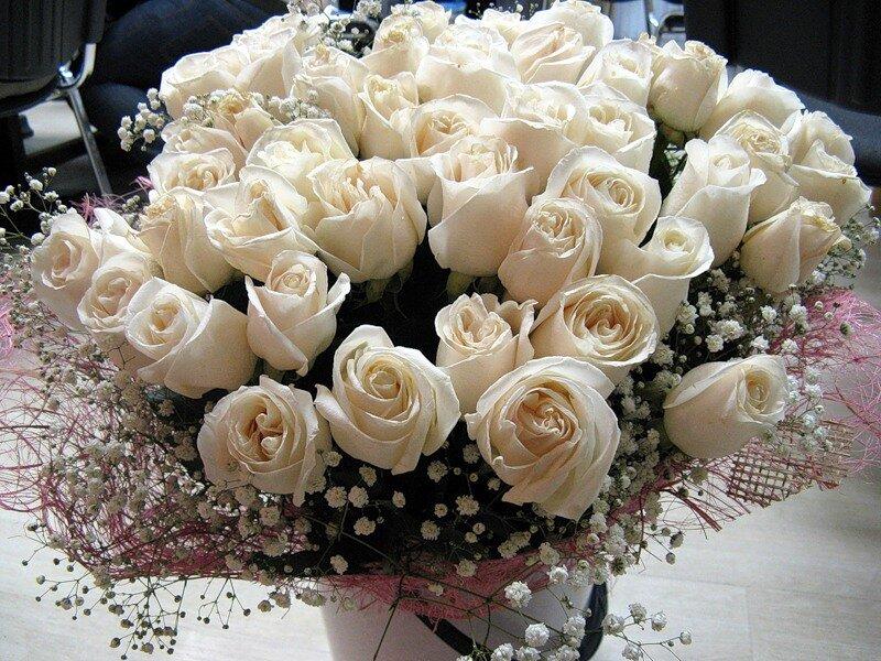 Картинки с белыми розами для любимой