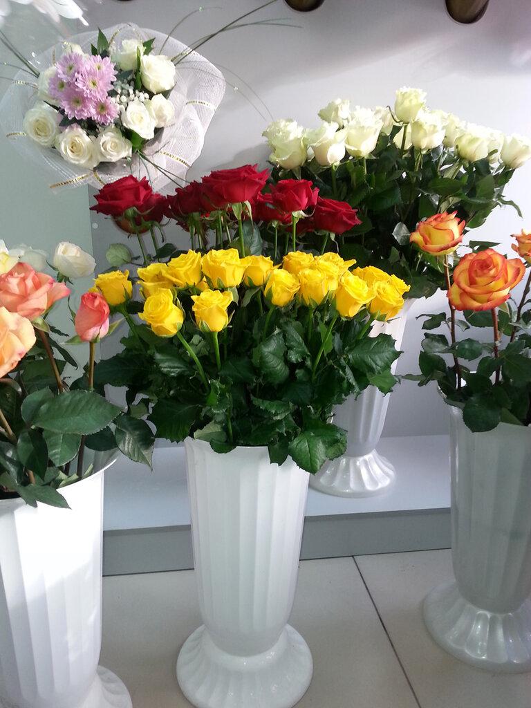 Роз каллами, магазин цветов белая калитва