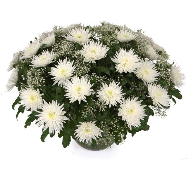 Днем счастья, открытки с днем рождения букеты с хризантемами