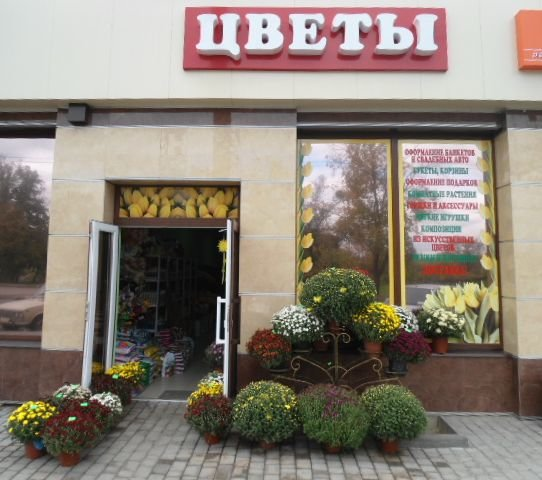 Харьков цветы жизни, просто так