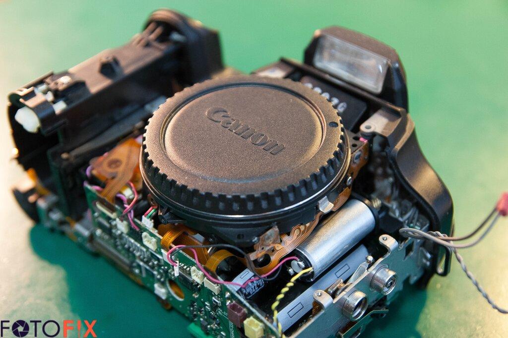 Оправдает ли покупку зеркальный фотоаппарат названию несложно