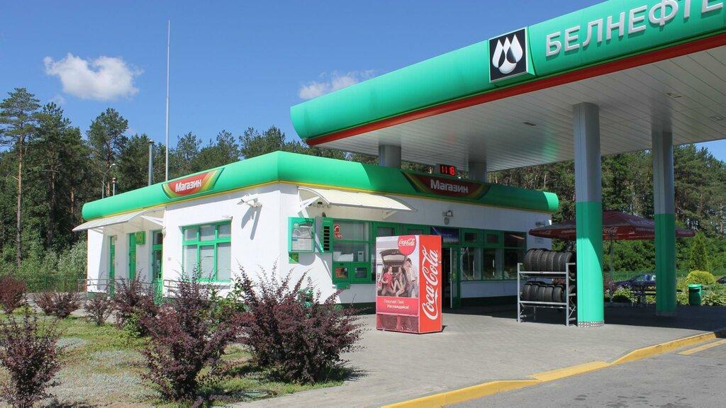 АЗС — Белоруснефть — Гомельская область, фото №1
