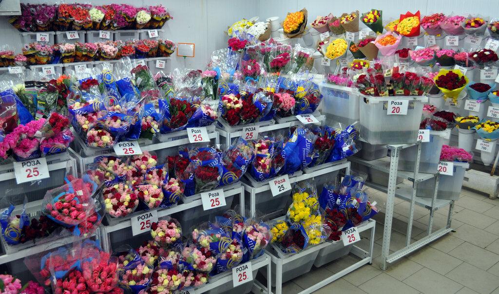 Мир Цветов Тула На Болдина Интернет Магазин