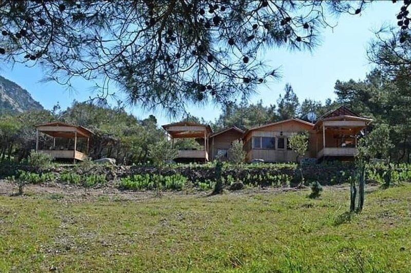 Karadere Park Orman